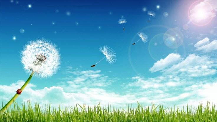 3D-Nature-Blue-Sky-Hd-Background.jpg