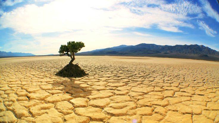 arid.jpg